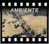 Gall_Ambiente